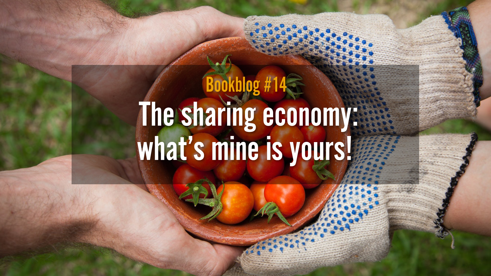 The sharing economy: what's mine is yours!