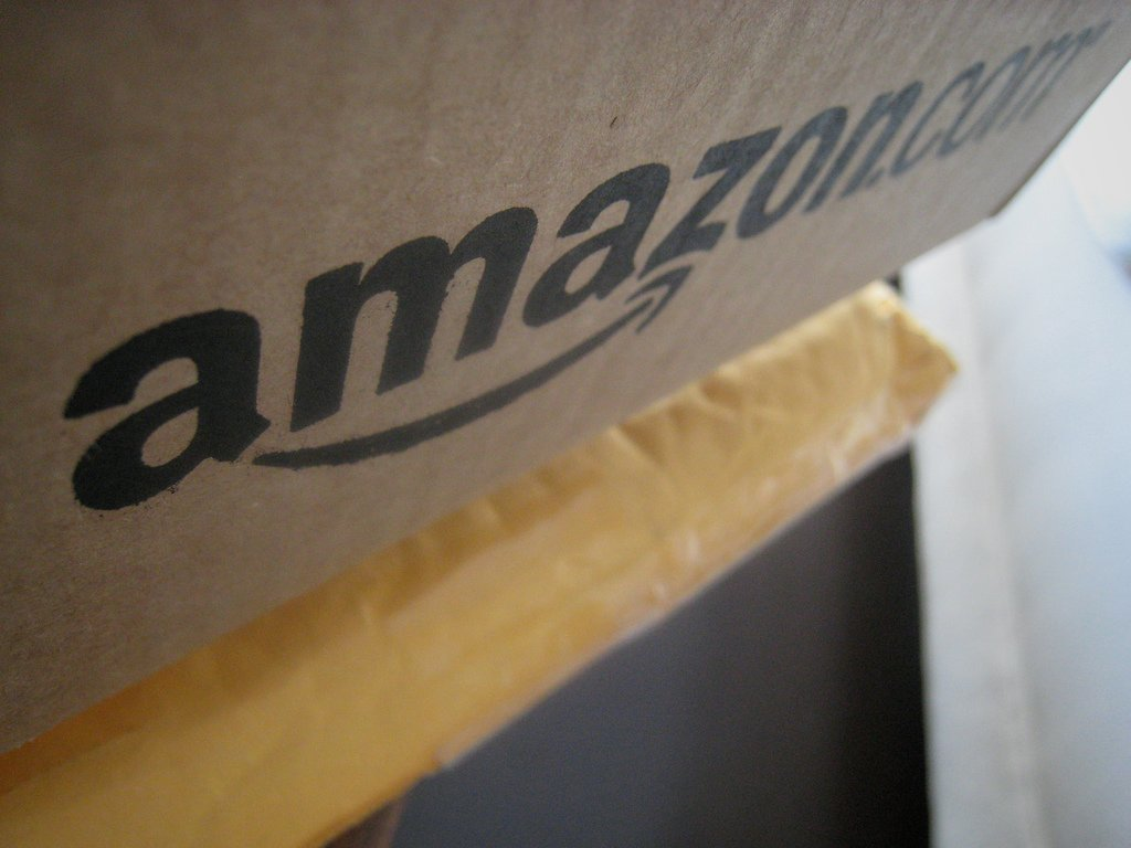 Amazon: bedreiging of kans?